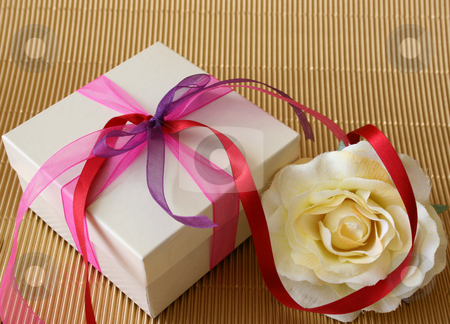 Gift Rose stock photo, Cream colored gift box and a cream colored rose by Vanessa Van Rensburg