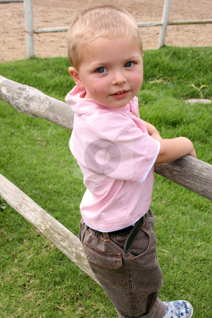 Standing on Fence stock photo, Young boy standing on wooden fence on a farm by Vanessa Van Rensburg