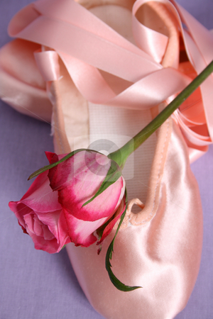 Ballet Shoe stock photo, Satin Ballet shoe with a pink rose by Vanessa Van Rensburg
