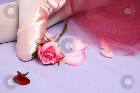 Ballet Shoe stock photo, Satin Ballet shoe with a pink rose. by Vanessa Van Rensburg