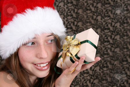Christmas Beauty stock photo, Brunette Teenager wearing a fluffy christmas hat by Vanessa Van Rensburg