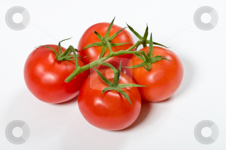 Tomato stock photo, Vegetable series: red tomato over white background by Gennady Kravetsky