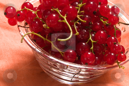 Currant  stock photo, Food series: ripe red currant on the bow by Gennady Kravetsky