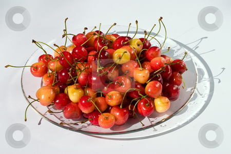 Cherry stock photo, Food series: red and yellow ripe cherries on plate by Gennady Kravetsky