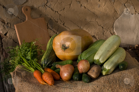 Harwest stock photo, Autumnal still life with different vegetables on the wall background by Gennady Kravetsky