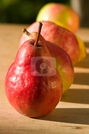 Pear and apple stock photo, Food series: close up of apple and pear row by Gennady Kravetsky