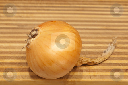 Onions stock photo, Onions on a table by Ilya Kapustnikow