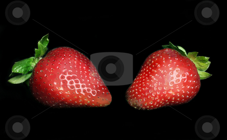 Succulent Strawberries stock photo, Two ripe juicy strawberries on black by Leah-Anne Thompson