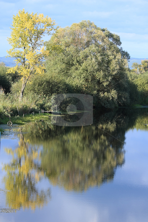 Peace stock photo, Still life on a overgrown with trees riverbank by ARPAD RADOCZY