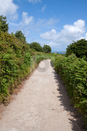Narrow English country lane, St. Agnes Isles of Scilly. stock photo, Narrow English country lane, St. Agnes Isles of Scilly. by Stephen Rees