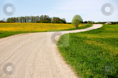 Country Road 2 stock photo,  by Stanislovas Kairys