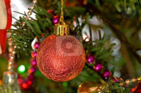 Red christmas bulbs stock photo, Some christmas balls decorated on a tree by Tito Wong