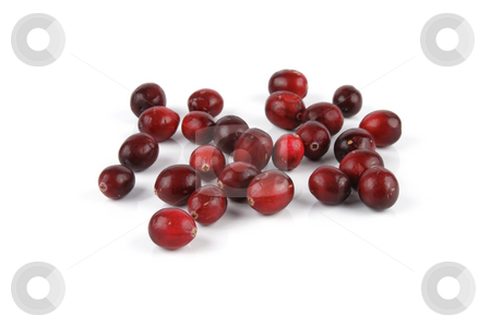 Cranberries stock photo, Red ripe juicy cranberries on a reflective white background by Keith Wilson