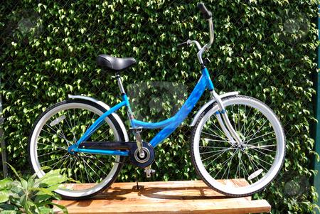 Female bicycle stock photo, Female bicycle against the trees and bush by Nataliya Taratunina