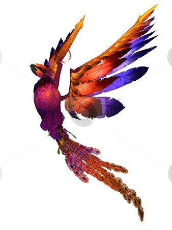 Phoenix stock photo, 3D rendered fantasy phoenix bird on white background isolated by Patrik Ruzic