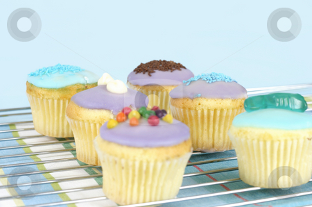 Iced Cakes stock photo, Iced cakes sitting on a wire cake  cooler.   Focus is across the middle cakes. by Leah-Anne Thompson