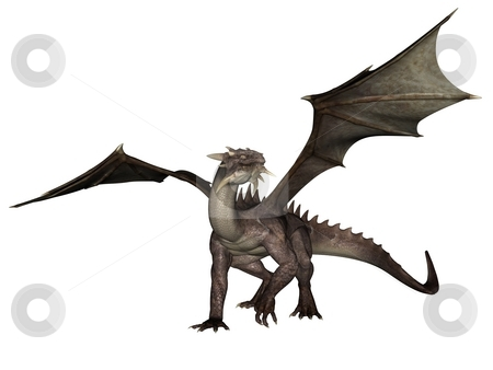 Dragon stock photo, 3D rendered flying dragon isolated on white background by Patrik Ruzic