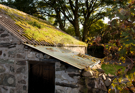 Old farm building with moss covered roof stock photo, Lean-to building on old Welsh mountain farm with mossy roof by Steven Heap