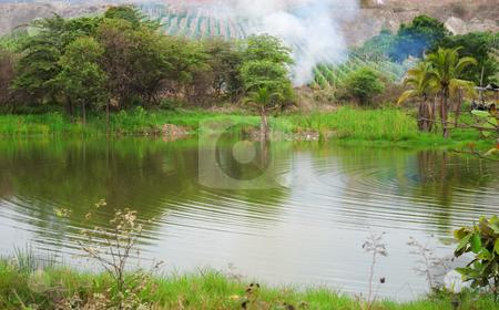 Rural landscape stock photo, Rural landscape: lake, green trees and grass by Nataliya Taratunina