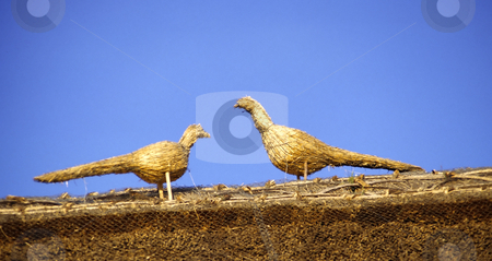 Thatched Birds on roof stock photo, Detail of two thatched birds on the roof of an old cottage in England by Steven Heap