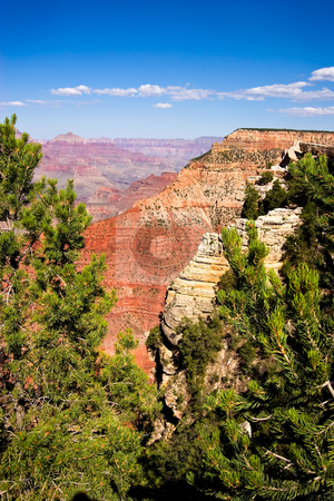 Overview of a Grand Canyon valley framed by trees stock photo, Overview of a Grand Canyon valley framed by trees by Steven Heap