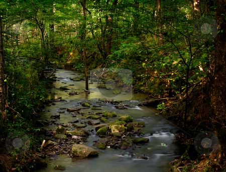 Burbling brook stock photo, A small creek taken with long exposure trickles through a wooded forest by Steven Heap