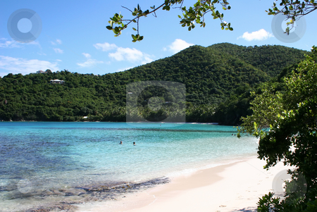 Beach and Bay on the Caribbean island of St John stock photo, Beach and Bay on the Caribbean island of St John by Steven Heap
