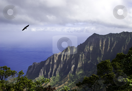Na Pali Coast stock photo, View of the Na Pali coast of Kauai by Steven Heap