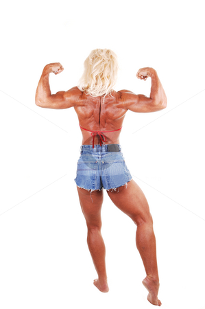 Bodybuilding woman. stock photo, A blond muscular bodybuilding girl standing in the studio shooing her  strong legs and the upper body and arms, over white background. by Horst Petzold