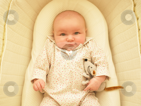 Baby in Bassinet stock photo, Baby in bassinet with stuffed toy. Horizontally framed shot. by Mog Ddl