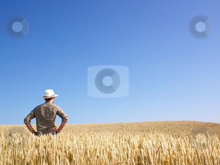 Man in Wheat Field stock photo, Man standing in wheat field. Horizontally framed shot. by Mog Ddl