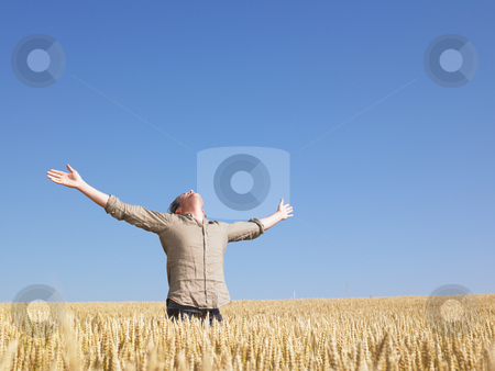 Man in Wheat Field With Arms Outstretched stock photo, Man standing in wheat field with arms outstretched. Horizontally framed shot. by Mog Ddl