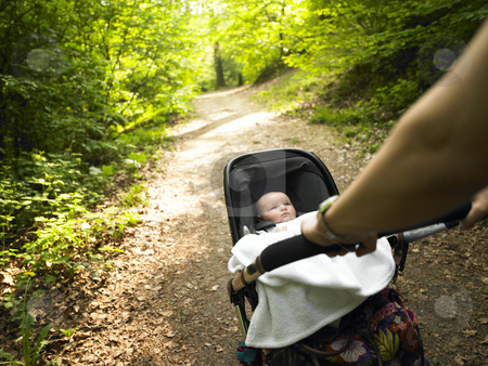 Parent and Baby Taking a Walk in the Woods stock photo, A parent pushes a baby carriage along a wooded path. Horizontally framed shot. by Mog Ddl