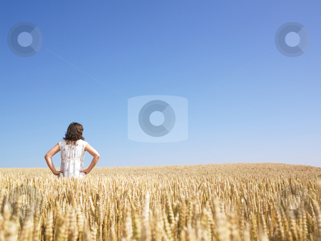 Woman in Wheat Field stock photo, Woman standing in wheat field with hands on hips. Horizontally framed shot. by Mog Ddl