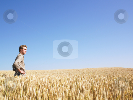 Man in Wheat Field stock photo, Man standing in wheat field. Horizontally framed shot. by Mog Ddl