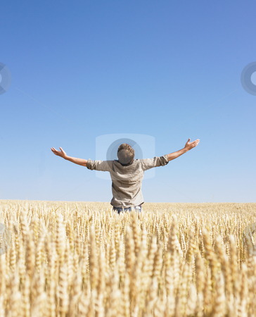 Man top of the world in wheat field stock photo, Man doing a top of the world in wheat field by Mog Ddl
