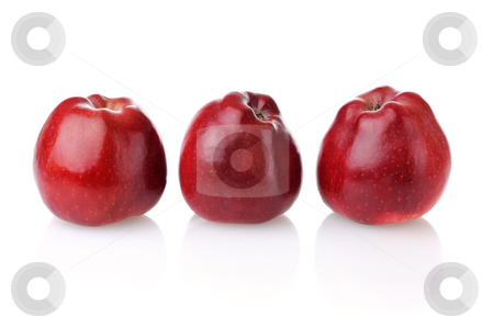 Three red apples with reflection stock photo, Three fresh red apples with reflection on white background by Iryna Rasko