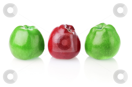 To be different one stock photo, Different bright red apple between two green apples on white background by Iryna Rasko