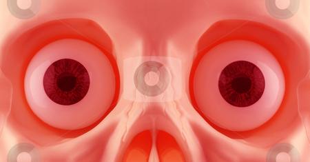 Skeleton Eyes stock photo, Skeleton eyes close up by Georgios Kollidas