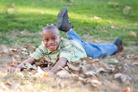 Young African American Boy in the Park stock photo, Young African American Boy Having Fun in the Park. by Andy Dean