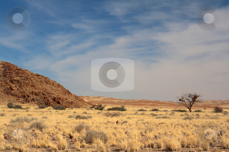 Landscape in Namibia stock photo, Landscape in Namibia;photographed in October 2009 by Manuela Schueler