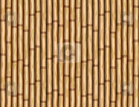 Bamboo wall stock photo, Large image of bamboo poles as wall or curtain by Phil Morley
