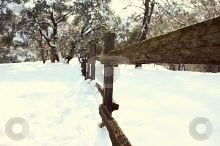 Old wood fence in the snow stock photo, Old wood fence in the snow by Gregory Dean