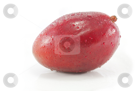 Whole red mango stock photo, Whole ripe juicy mango on white by Chris Alleaume
