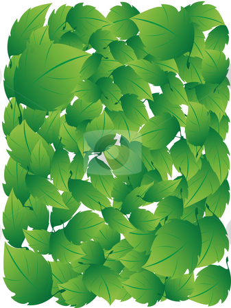 Green leafs stock photo, Texture made in green leafs on a white background by Alina Starchenko