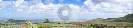 Stock Photo of panoramic view of sugarcane field  stock photo, Tropical panoramic view of sugarcane plants with beautiful cloudy background in the north of the island of Mauritius. by Gowtum Bachoo