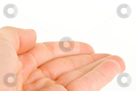 Hand on White stock photo, Hand on white background. by Tammy Abrego