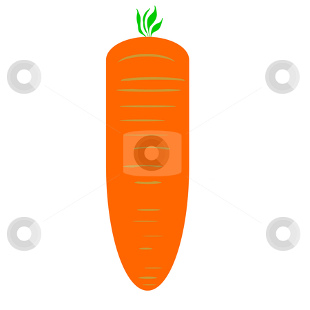Carrot stock photo, Illustration of raw carrot isolated on white background. by Martin Crowdy