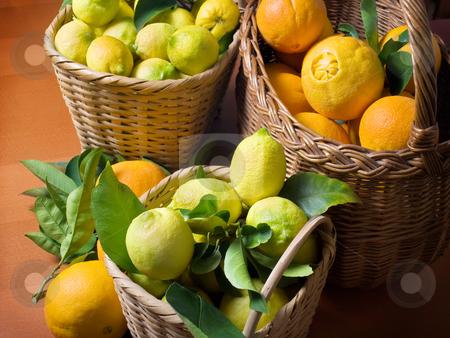 Citrus harvest stock photo, Baskets full of citrus fruits after harvest. by Sinisa Botas