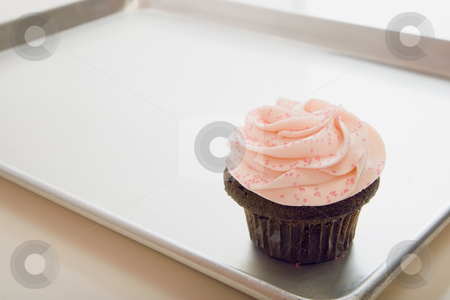 Cupcake on Tray stock photo, Close-up of a cupcake on a silver tray.  Horizontally framed shot. by Paul Burns